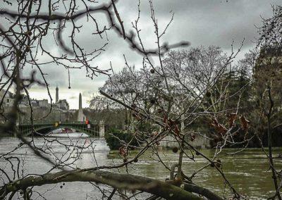 Seine en crue derrière les branches par J. Barret