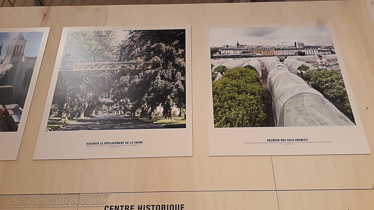 L'exposition Capital Agricole du Pavillon de l'Arsenal présentée par Augustin Rosenstiehl par JBarret-17