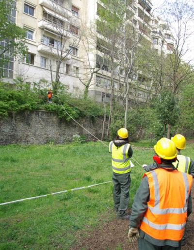 Reportage sur le Sentier Nature de la Petite Ceinture du 16e parJ.Barret-10