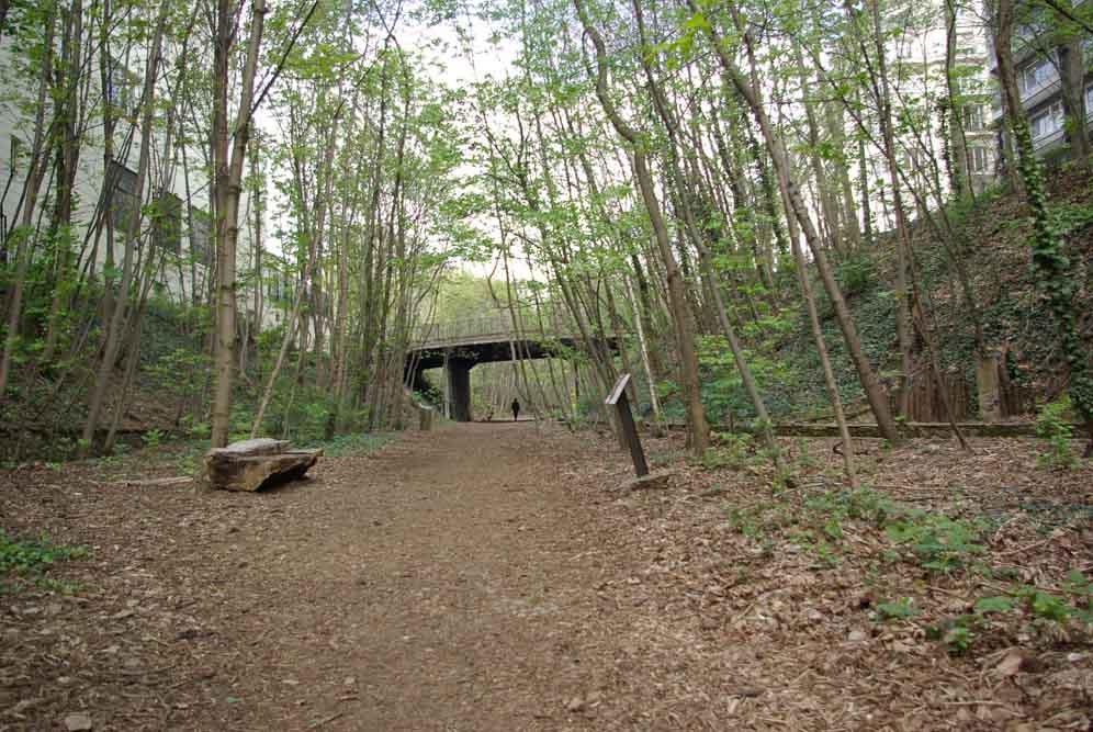 Reportage sur le Sentier Nature de la Petite Ceinture du 16e parJ.Barret-13