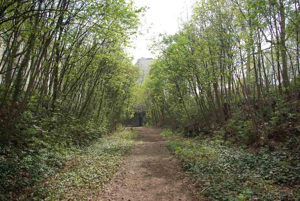 Reportage sur le Sentier Nature de la Petite Ceinture du 16e parJ.Barret-19
