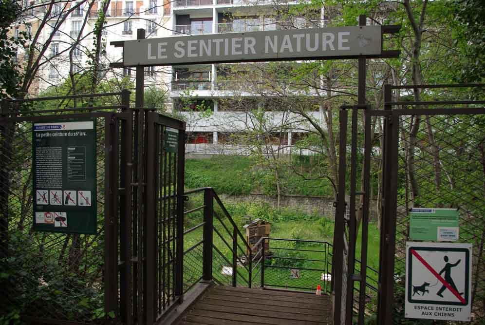 Reportage sur le Sentier Nature de la Petite Ceinture du 16e parJ.Barret-22