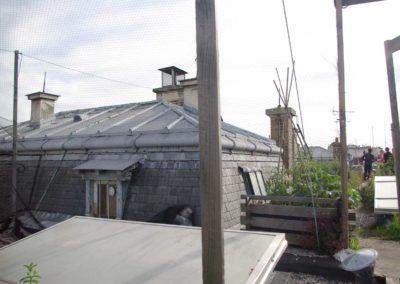Visite du toit potager de l'école AgroParisTech-14