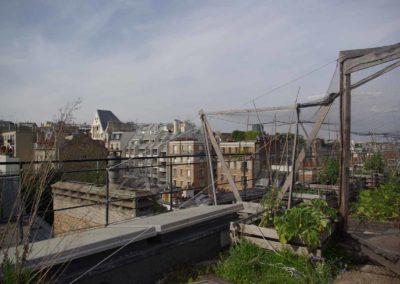 Visite du toit potager de l'école AgroParisTech-16