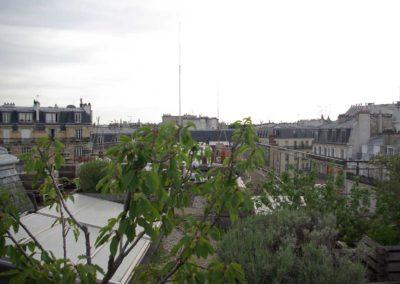 Visite du toit potager de l'école AgroParisTech-21