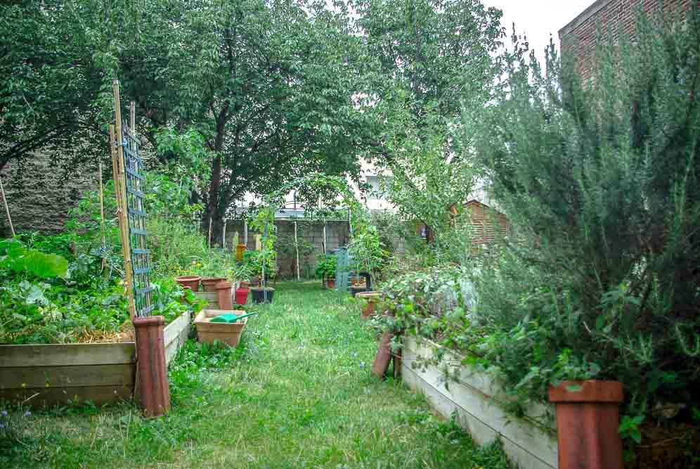 Le jardin partagé de la rue Ferdinand-Buisson, en août 2019
